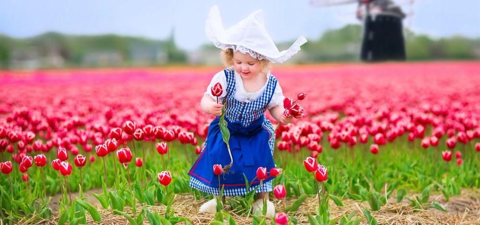 La Hollande & ses Tulipes