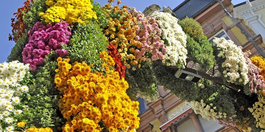 Fête des Chrysanthèmes en Forêt Noire