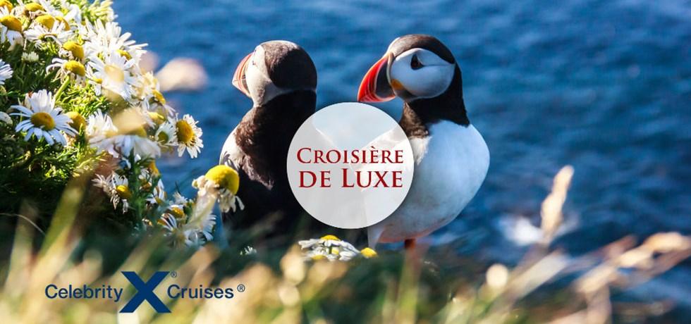 VENTE FLASH jusqu'au 24 octobre ! Croisière de LUXE 11 jours Islande, Irlande, Ecosse