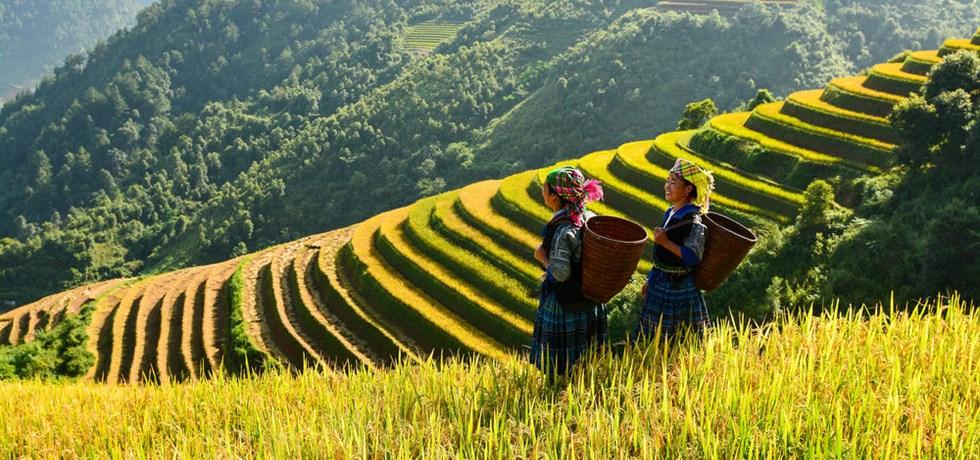 Lumières du Vietnam & ses minorités JUSQU'À -100€*