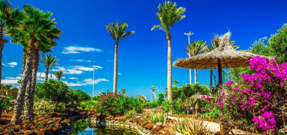 J'AIME LE SOLEIL! Fuerteventura Hôtel Pajara Beach 4*