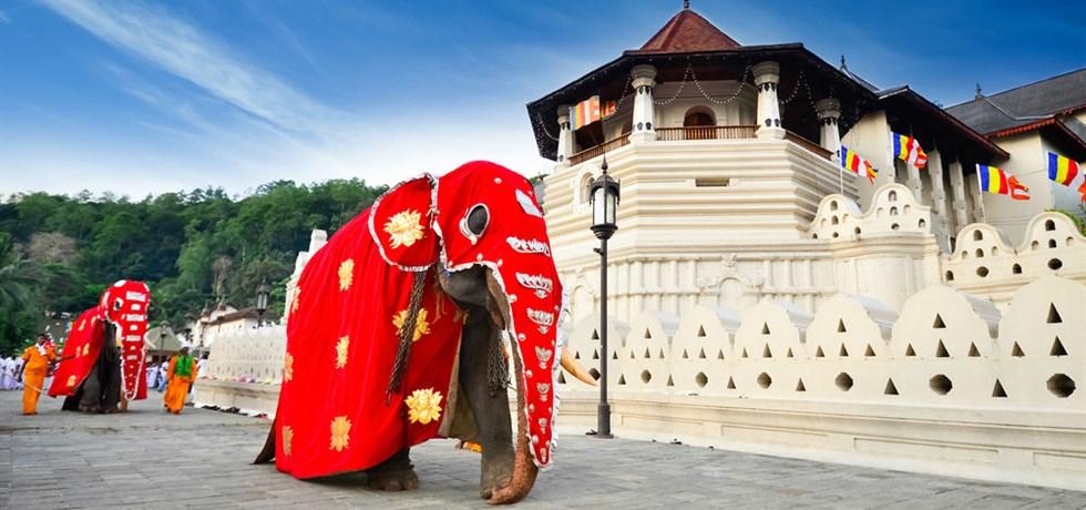 Réservez Tôt** -100 €/pers ! Sri Lanka