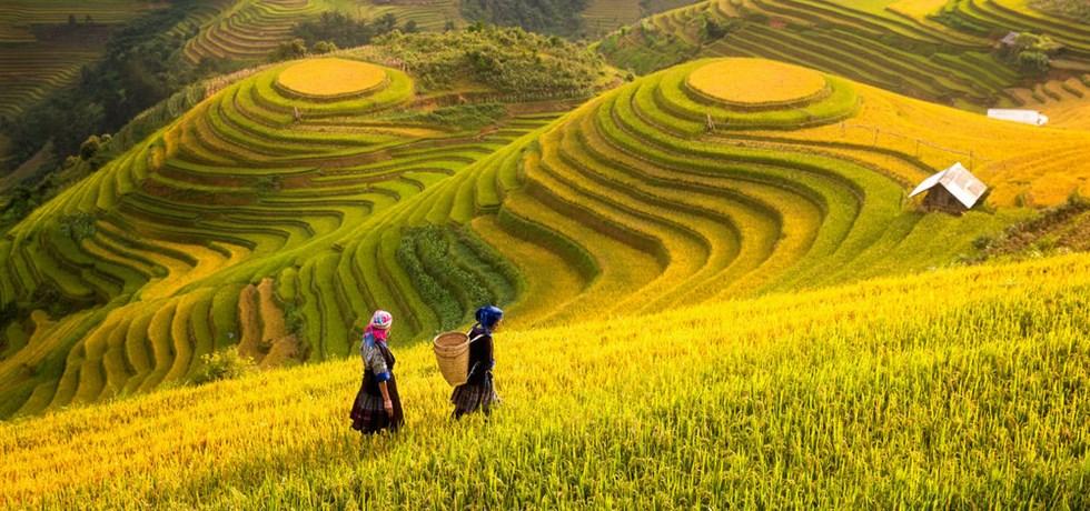 Exclusif Rive Gauche -100 €/pers ! - Le Vietnam