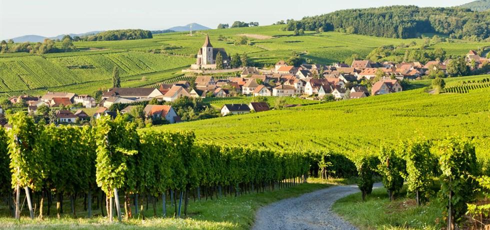 Alsace, Fête des Vendanges